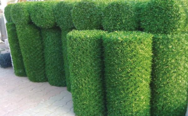 Рулонный зеленый забор DO